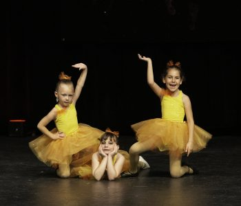 dance lessons kenosha, step by step dance academy, sbs